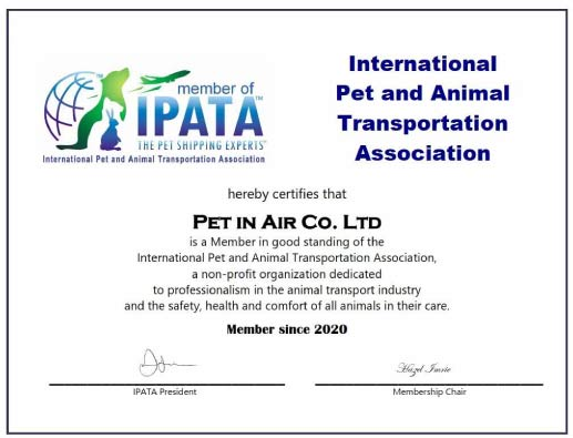 ipata introduction